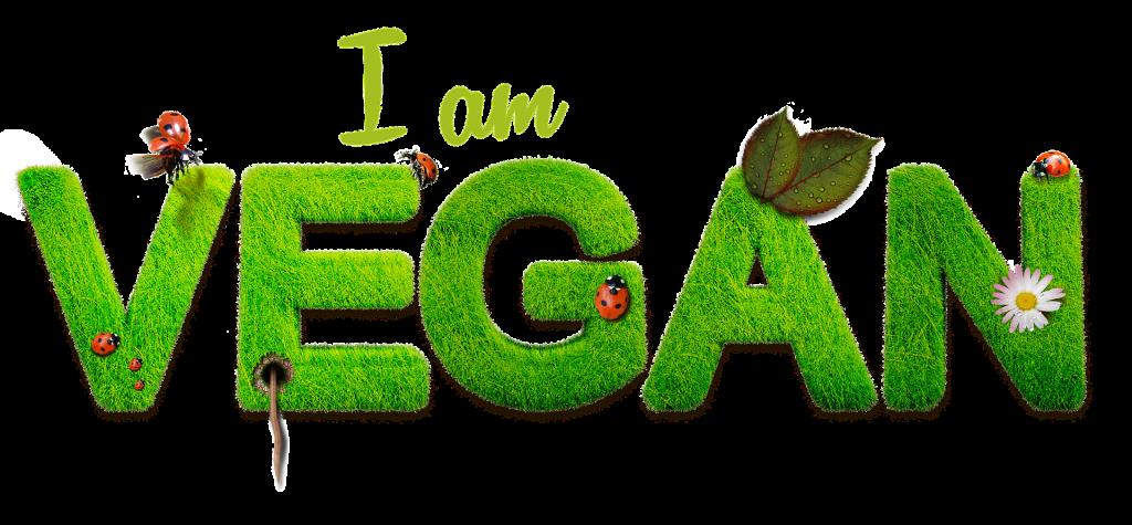 Wieso bist du eigentlich Vegan? Teil 1, Sozial-Ökologisch
